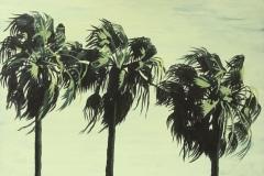 Palmiers croquis 9