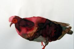 Pigeon aquarelle 24