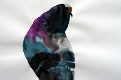 Pigeon aquarelle 61