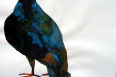 Pigeon aquarelle 101