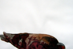Pigeon aquarelle 105