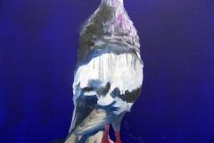 Pigeon 26